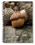 Head Of The Class Spiral Notebook