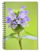 Heal-all Spiral Notebook