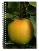 Healthy Glow Spiral Notebook