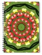 Heart Kaleidoscope Spiral Notebook