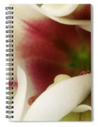 Heart Of A Lily Spiral Notebook