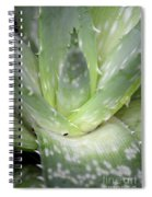 Heart Of An Aloe Spiral Notebook