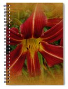 Heart Of The Lily Spiral Notebook
