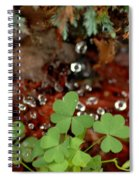 Heart Shaped Clover And  Dew Drops Spiral Notebook