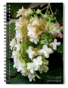 Heavenly Hydrangea Spiral Notebook