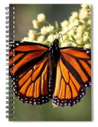 Heavenly Wings Spiral Notebook