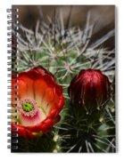 Hedgehog Cactus Flowers  Spiral Notebook