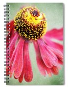 Helenium Flower 2 Spiral Notebook