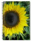 Helios Flower Spiral Notebook