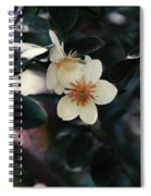 Hello Spring Spiral Notebook