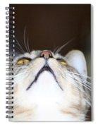 Henry Spiral Notebook