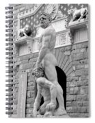 Hercules And Cacus Spiral Notebook