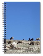 Herd In The Atlas Mountains 02 Spiral Notebook