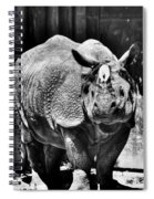 Heres Lookin At You  Kid Indian Rhino  Spiral Notebook