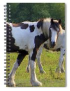 Here's Looking At Ya Spiral Notebook