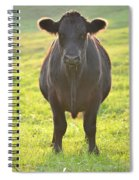 Here's The Beef Spiral Notebook