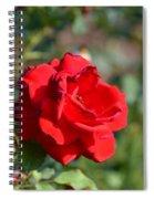Hermosa Spiral Notebook