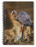 Heron Bronze Spiral Notebook