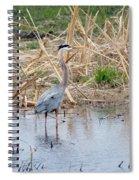 Heron Spiral Notebook
