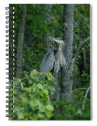 Heron On A Limb Spiral Notebook