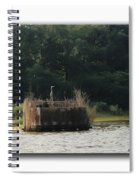 Heron On The Blind Spiral Notebook