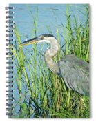 Heron Rockefeller Wma La Spiral Notebook