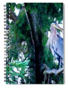 Heron Spiral Notebook