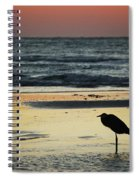 Heron Waiting For The Sunrise Spiral Notebook