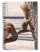 Hey Any More Room Spiral Notebook