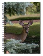 Hi Deer Spiral Notebook