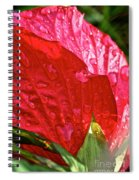 Hibiscus Blossom In Red Spiral Notebook