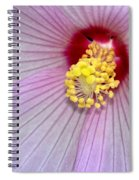 Hibiscus Closeup Spiral Notebook