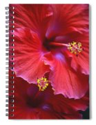 Hibiscus Duo Spiral Notebook
