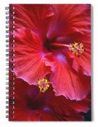 Hibiscus Duo Spiral Notebook