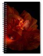 Hibiscus Glow Spiral Notebook