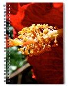 Hibiscus Highlight Spiral Notebook
