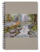 Hidden Falls Tetons Spiral Notebook