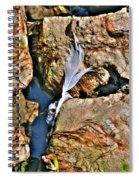 Hidden Images Vert Spiral Notebook