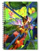 Hidden In Color Spiral Notebook