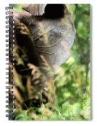 Hidden Patterns Blending In Spiral Notebook