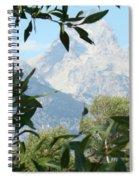 Hidden View Spiral Notebook