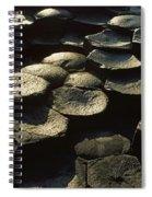 High Angle View Of Basalt Rocks, Giants Spiral Notebook