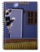 High Flying Catch Spiral Notebook