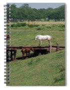 High Level Meeting Spiral Notebook