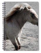 High Spirited Pony Spiral Notebook