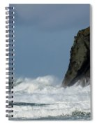 High Surf Spiral Notebook