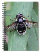 Highly Polished Spiral Notebook