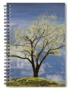 Hilltop Spiral Notebook