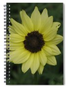 His Love Endures Forever Spiral Notebook