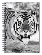 His Majesty - Bw Spiral Notebook